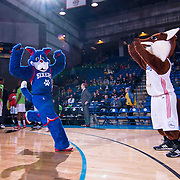 Philadelphia 76ers New Mascot Franklin (LEFT) and 87ers Mascot Caesar take the floor together prior to the start of a NBA D-league regular season basketball game between the Delaware 87ers and the Westchester Knicks (New York Knicks) Wednesday, Feb. 17, 2015 at The Bob Carpenter Sports Convocation Center in Newark, DEL