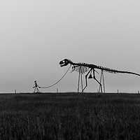 http://Duncan.co/skeleton-man-walking-skeleton-dinosaur