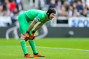 Petr Cech (#1) of Arsenal looks on at a break in play during the Premier League match between Newcastle United and Arsenal at St. James's Park, Newcastle, England on 15 September 2018.