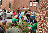 Laconia High School Clean Up service day.  Karen Bobotas for the Laconia Daily Sun