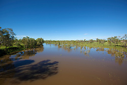 Lush green growth beside the river at Fitzroy Crossing in the wet season.  The local Aboriginal people know the river as Bandrarl Ngadu.