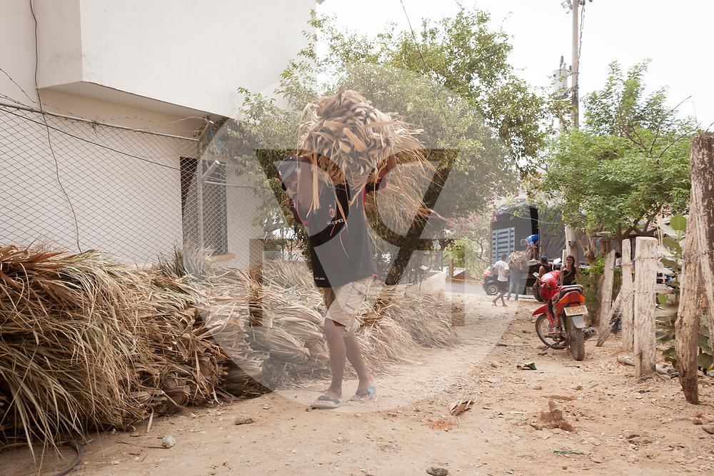 KOLUMBIEN - TAGANGA - Ein Bauarbeiter trägt Palmblätter für eine Baustelle - 24. April 2014 © Raphael Hünerfauth - http://huenerfauth.ch