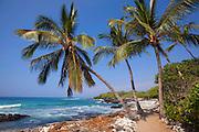 Puako coast, Kohala, Island of Hawaii