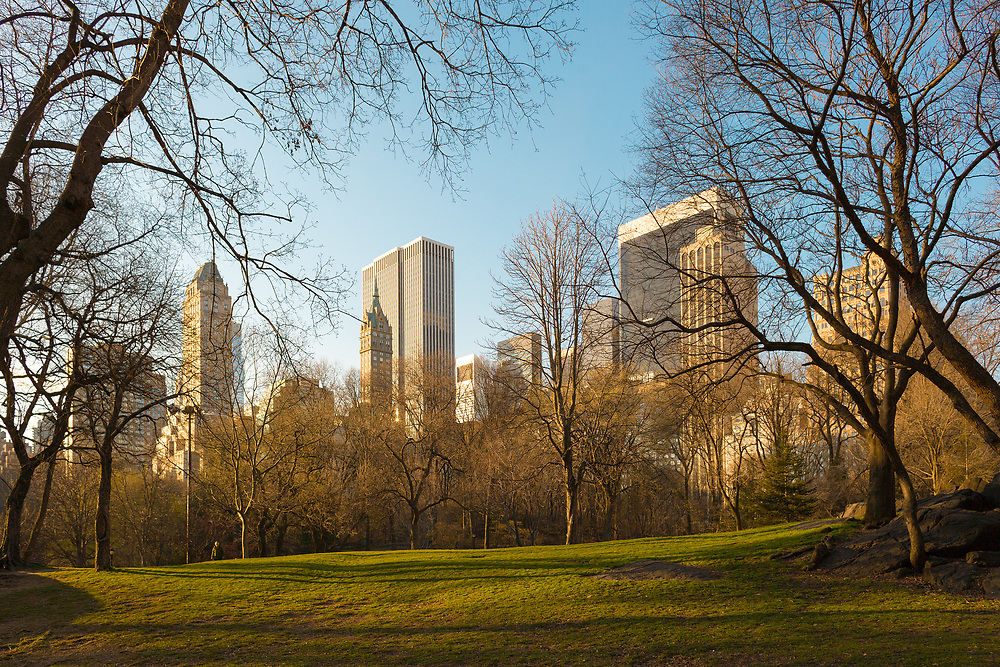 Skyline of Midtown Manhattan from Central Park, New York City, New York, USA
