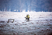 © Licensed to London News Pictures. 20/01/2015. Richmond, UK . A man cycles across a frosty meadow. Deer graze in frost covered grasses in Richmond Park, Surrey today 20th January 2015. Britain is experiencing very cold temperatures. Photo credit : Stephen Simpson/LNP