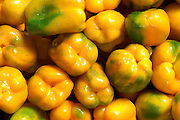 Fresh yellow Peppers group, stacked side by side in a farmers market.
