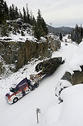 The 2017 Capitol Christmas tree being transported by Whitewood Transport down the Yaak River Road shortly after leaving the Historic Upper Ford Ranger Station where the Engelmann spruce was located in the upper Yaak Valley. Kootenai National Forest in the Purcell Mountains, northwest Montana.