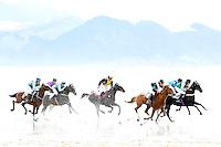 CASTLEPOINT BEACH RACES, WAIRARAPA
