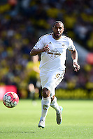 Ashley Williams, Swansea City