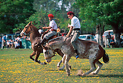 ARGENTINA, LAS PAMPAS, AGRICULTURE a 'doma' or traditional rodeo near San Andres de Giles; with gaucho breaking a wild horse on bareback