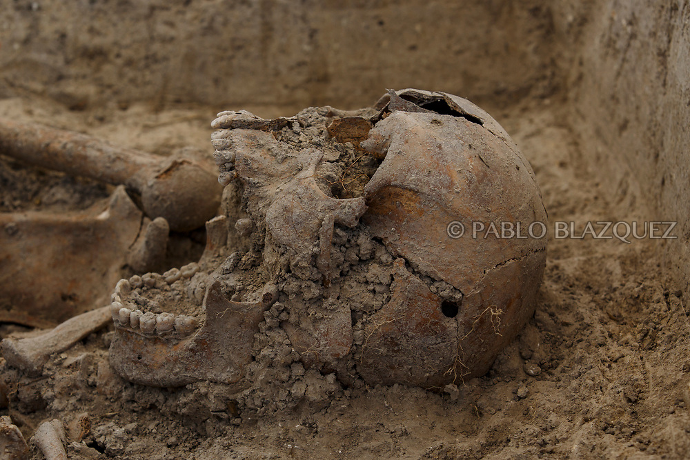 24/09/2017. A skulls is perfored by a bullet shoot as archeologists work at a mass grave known as 'La Fosa de los Maestros' (The teachers' mass grave) containing the bodies of 7 people in a field in Cobertelada on September 24, 2017 near Almazan, in Soria province, Spain. The seven people where allegedly assassinated on August 25, 1936 after being take from prison of Almazan during the Spanish Civil War by Falangists, as part of General Francisco Franco armed forces. The remains are supposed to belong to teachers in the region, who were also friends of Spanish writer Antonio Machado. The exhumation was done by members of ARANZADI and La asociacion Soriana Recuerdo y Dignidad (ASRD) 'The Soria Association for Memory and Dignity'. Spain's Civil War took the lives of thousands of people on both sides and civilians, but Franco continued his executions after the war has finished. Teachers, as part of the education sector, were often a target of Franco's forces. Spanish governments has never done anything to help the victims of the Civil War and Franco's dictatorship while there are still thousands of people missing in mass graves around the country. (© Pablo Blazquez)