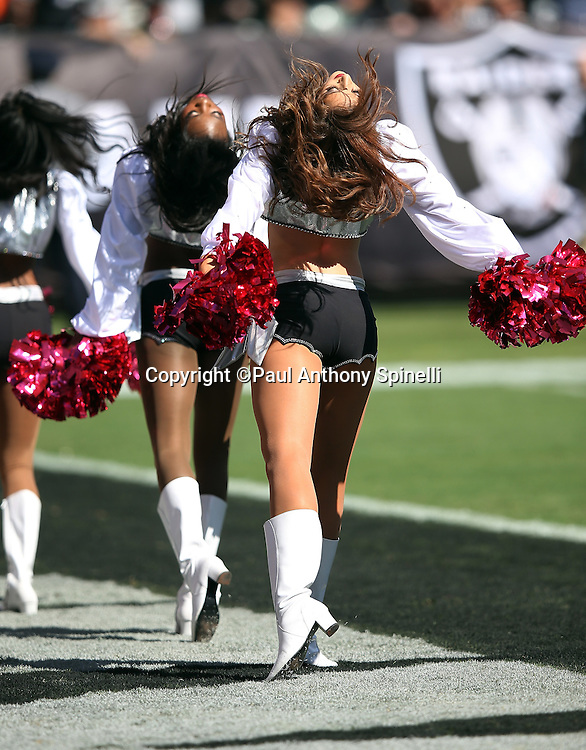 Oakland Raiders cheerleaders wave pink pom poms in honor of cancer awareness during the 2015 NFL week 5 regular season football game against the Denver Broncos on Sunday, Oct. 11, 2015 in Oakland, Calif. The Broncos won the game 16-10. (©Paul Anthony Spinelli)