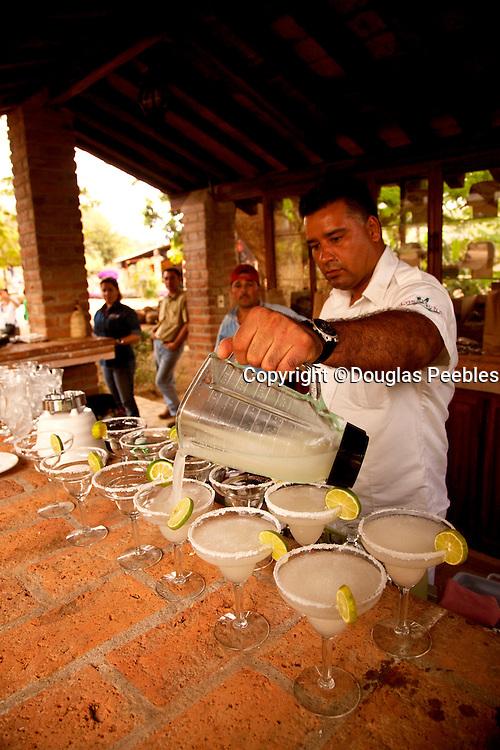Los Osuna, Agave distillery, Sinaloa, Mexico