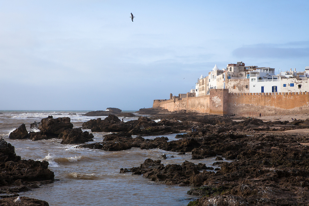View of the Atlantic Ocean and the city of Essaouira, Morocco, with seagulls and a blue sky.