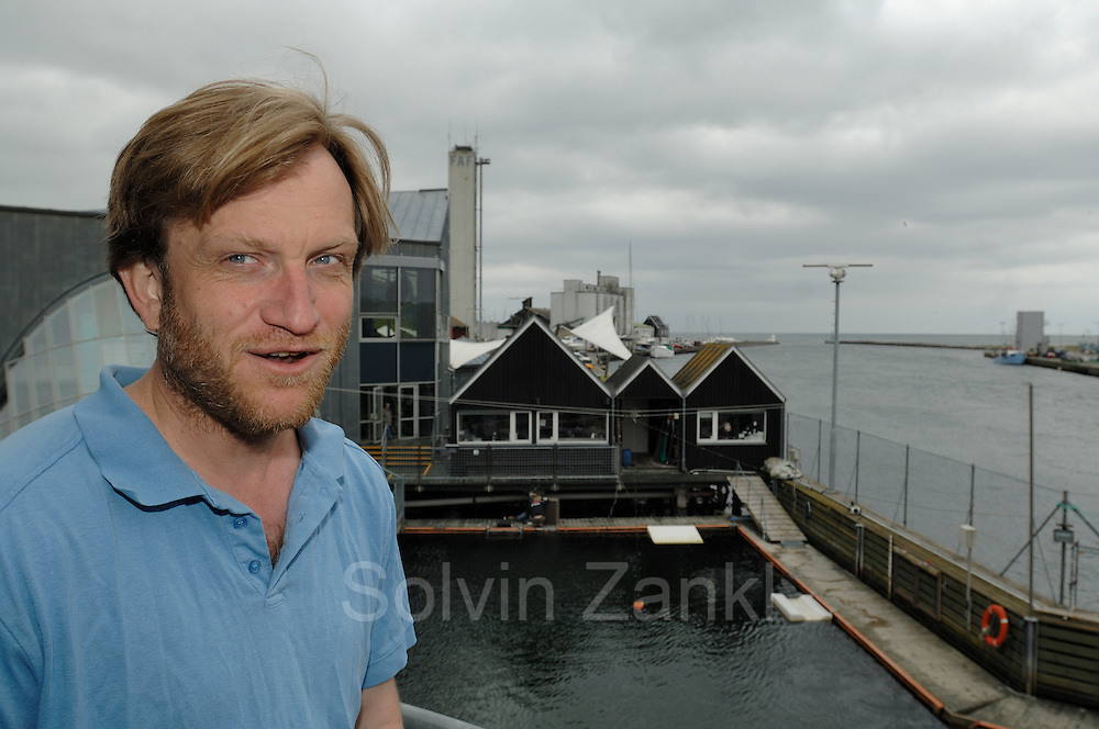 Magnus Wahlberg - Harbour porpoise Phocoena Phocoena Fjord & Baelt