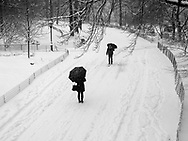A meeting  on the bridle path in Central Park during a snow storm