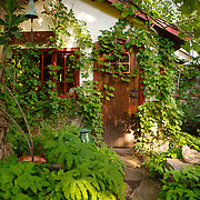 20160810  Vera Garden