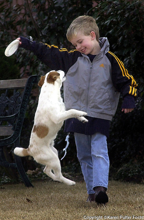 Joshua Payne plays Frisbee with his dog Buddy outside of his Cordova home.  Buddy is a Jack Russell learning some new tricks.