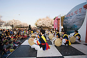 Yeouido Island. Hundreds of Thousands of Seoulites enjoy the Cherry Blossom in Yunjungno, the street around the National Assembly lined by cherry trees which has been cleared from traffic for these days. Traditional Korean drummers on a stage in front of National Assembly building.