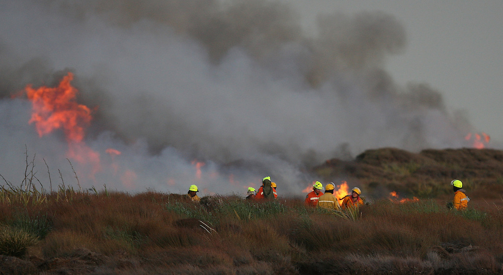 Fire fighters at a fire burning near Awarua Wetlands, Invercargill, New Zealand, Monday, November 19, 2012. Credit:SNPA / Dianne Manson.