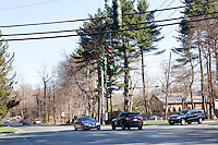 9 April, 2009. Brookville, NY. An intersection on Cedar Swamp Road in Brookville, NY. The Gold Coast village of Brookville is the wealthiest community in the United States, according to a survey published Wednesday by BusinessWeek magazine.<br /> <br /> Brookville was one of nine Long Island communities to make the magazine's list of the country's 25 wealthiest towns, based on research by the Gadberry Group, of Little Rock, Ark.<br /> <br /> The village's mayor, Caroline Zimmermann Bazzini, said Brookville residents likely felt the pain of recession much less than most other folks.<br /> <br /> Brookville residents had the highest average net worth of any town on the list: $1.67 million. The enclave's well-to-do denizens had an average annual income of $328,000, ranking it seventh on the list.<br /> <br /> ©2009 Gianni Cipriano<br /> cell. +1 646 465 2168 (USA)<br /> cell. +1 328 567 7923 (Italy)<br /> gianni@giannicipriano.com<br /> www.giannicipriano.com