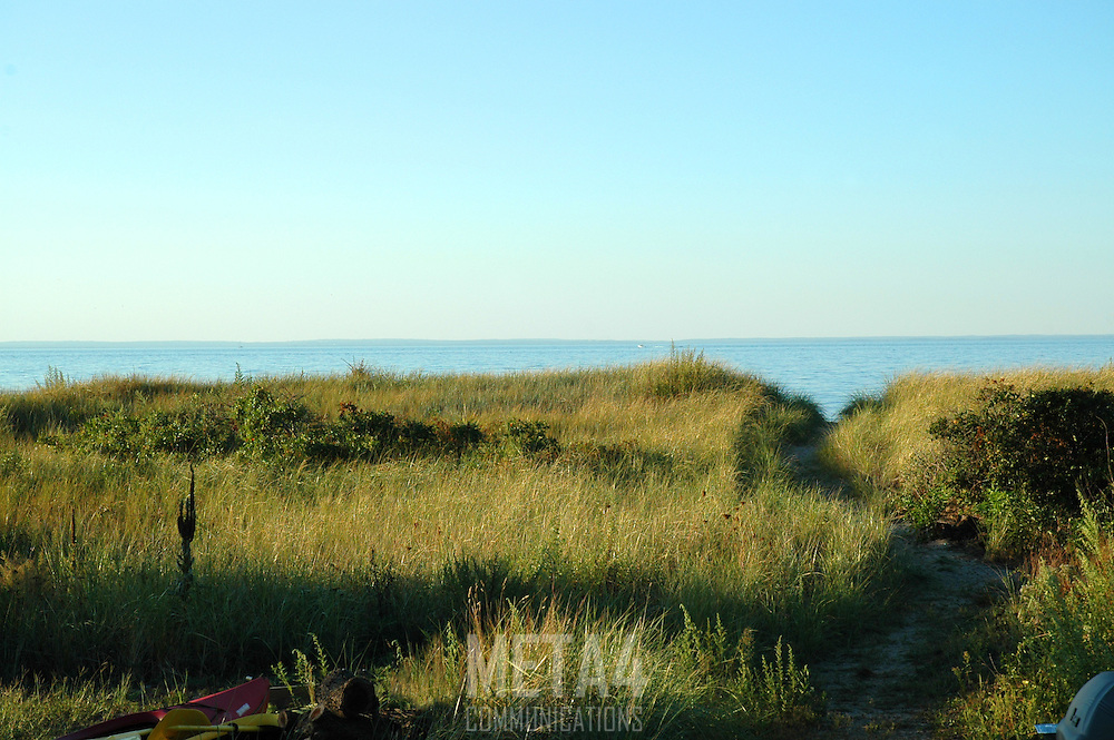 View of bluff and marsh grass along north shore of Long Island Sound.