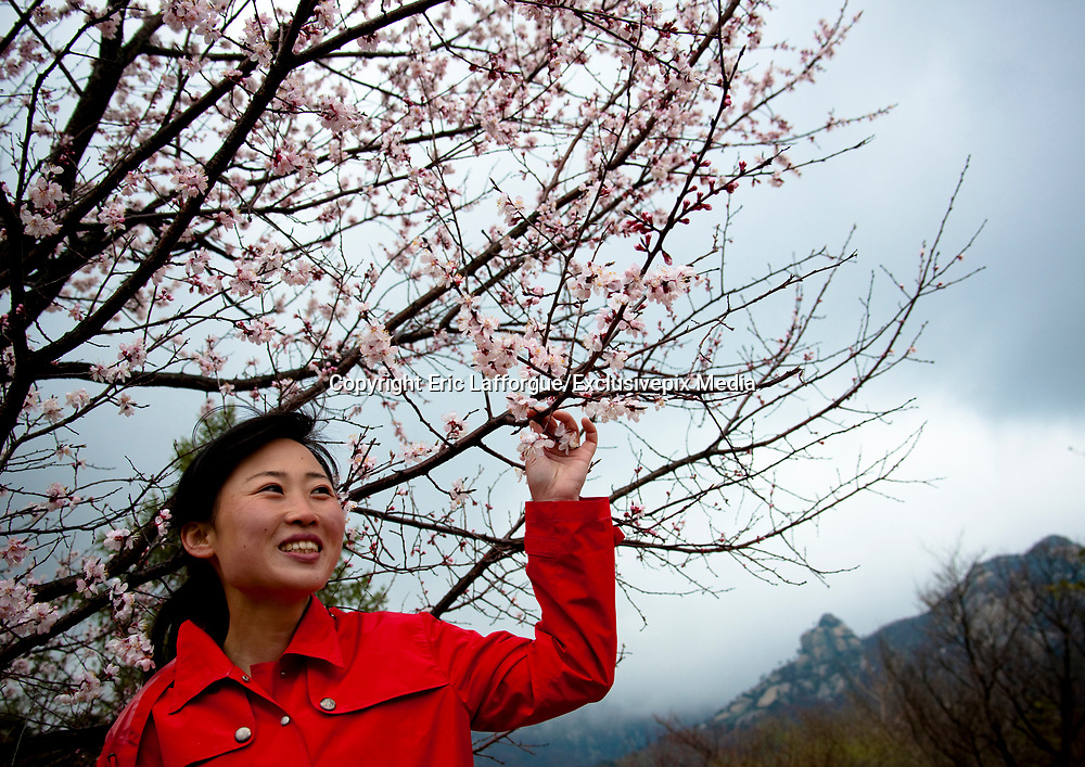 "Fashion in North Korea<br /> <br /> In every corner of the earth, women love to look beautiful and keep up with the latest fashion trends. The women of North Korea are no different. Fashion is taken seriously here. But in North Korea, women do not read Elle or Vogue; they just glimpse a few styles by watching TV or by observing the few foreigners who come to visit. In the hermit kingdom, clothing also reflects social status. If you have foreign clothes it means you travel and are consequently close to the centralized power. Chinese products have inundated the country, adding some color to the traditional outfits that were made of vynalon fiber. But citizens beware, too much style means you're forgetting the North Korean juche, the ethos of self-reliance that the country is founded on! But the youth tend to neglect it despite the potential consequences.<br /> <br /> Photo shows: The Korean Central News Agency said of this style: ""Spring Fashion for Women's Formal Wear"" features clothing that is ""bright, with daring colors appropriate for the overall mood of spring."" <br /> ©Eric Lafforgue/Exclusivepix Media"