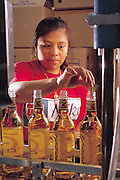 In the local mezcal cooperativa red agave worms are dropped into bottles of mezcal, tequila's smoky brother; the worms are placed in bottles of mezcal and tequila to certify the regional authenticity as well as the proof of the brew. Matatlán, Mexico. (Man Eating Bugs page 116 Bottom)