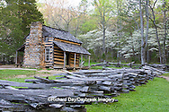 66745-04313 John Oliver Cabin in spring, Cades Cove area, Great Smoky Mountains National Park, TN
