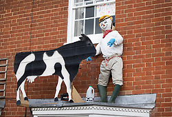 © Licensed to London News Pictures. 27/04/2020. Capel, UK. A scarecrow depiction of a farmer and his cow adorn the front  of a house in the Surrey village of Capel. Residents of the village have resurrected their summer tradition of scarecrows in tribute to NHS medical staff and other key workers. Up to 30 of the life size home made doll like characters can be seen in front gardens throughout the village. The public have been told they can only leave their homes when absolutely essential, in an attempt to fight the spread of coronavirus COVID-19 disease. Photo credit: Peter Macdiarmid/LNP