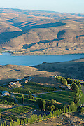 Aerial view over Cave B Vineyard, Ancient Lakes AVA vineyards near Quincy, central Washington