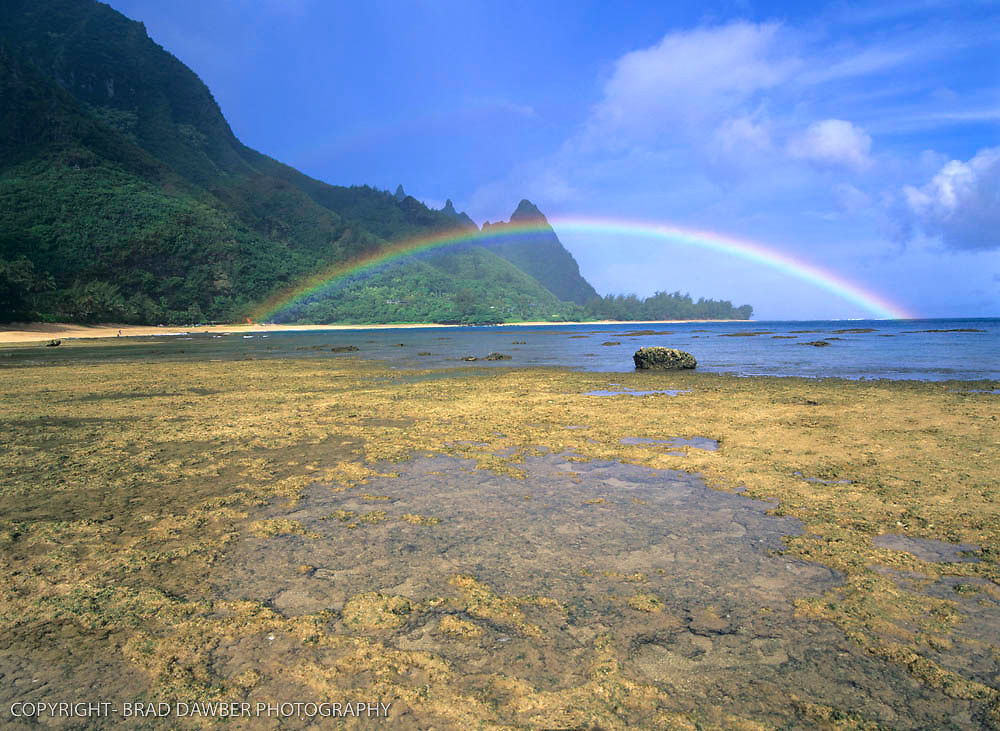 July 4 rainbow at Tunnels and a very low tide exposing the reef. I got rained on for awhile waiting for the shot