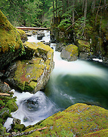 Deception Creek flowing past mossy boulders, Alpine Lake Wilderness Washington USA