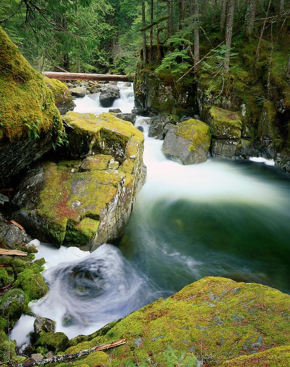 Deception Creek flowing past mossy boulders, Alpine Lake Wilderness Washington USA