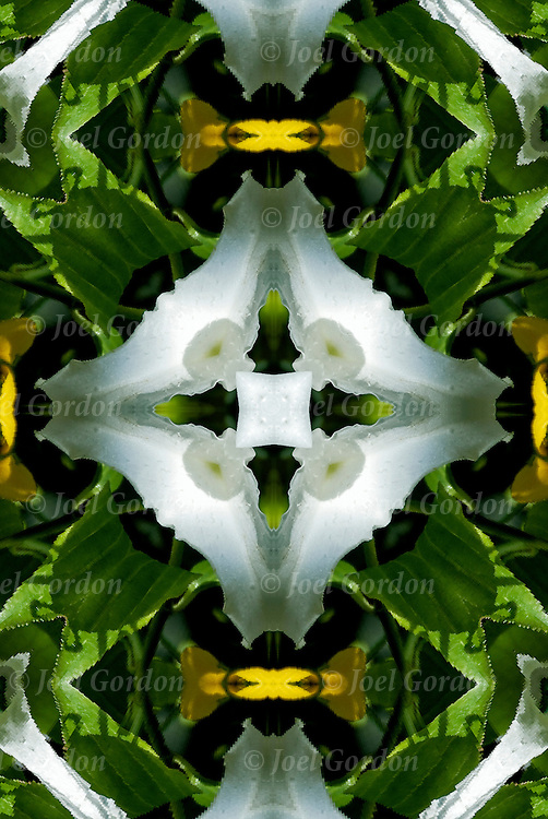 Photographic series of digital computer art, illusion and fantasy.<br />