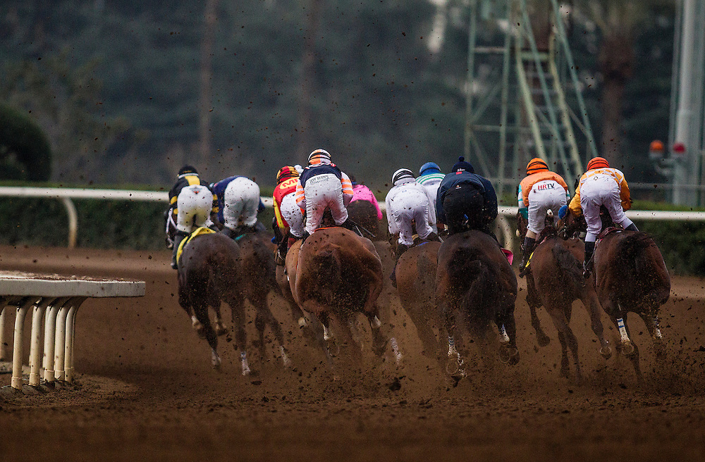January 10 2014: Hoppertunity with Martin Garcia up wins the San Pasqual Stakes at Santa Anita Park in Arcadia CA. Alex Evers/ESW/CSM