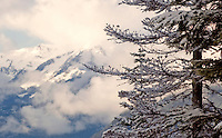 winter landscapes of Whistler, BC Canada with the mountains peeking through clouds