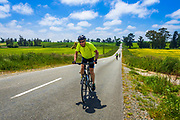 Cyclist in the Totara Valley, Canterbury, South Island, New Zealand
