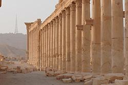 23.10.2008, Palmyra, SYR, IS ueberrennt antike Oasenstadt Palmyra, Die Terror Organisation Islamische Staat hat die syrische Oasenstadt Palmyra eingenommen. Damit droht eine der bedeutendsten antiken Stätten des Nahen Ostens zerstört zu werden, im Bild Archivmaterial, Antike Oasenstadt Palmyra // Islamic State (IS) fighters in Syria are said to have seized part of the town next to Palmyra, one of the Middle East's greatest archaeological sites, Palmyra, Syria on 2008/10/23. EXPA Pictures © 2015, PhotoCredit: EXPA/ Eibner-Pressefoto/ Harzer<br /> <br /> *****ATTENTION - OUT of GER*****