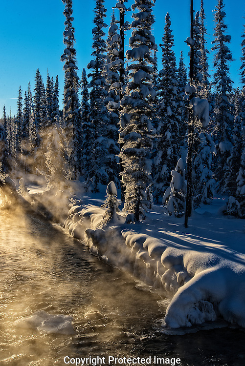 Bow River in winter., Alberta, canada, Isobel Springett