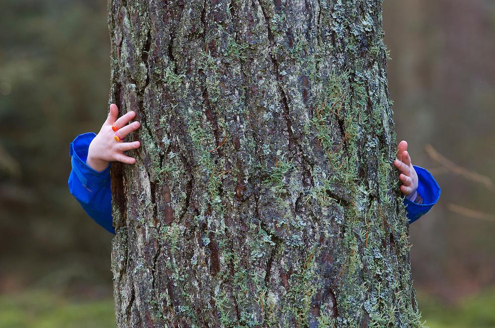 Child hugging a pine tree