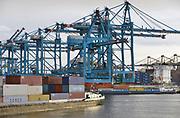 Nederland, the Netherlands, Rotterdam, 12-5-2017 Containeroverslag in de rotterdamse haven op de 2e maasvlakte, bij Euromax terminal. Een schip uit Korea wordt gelost bij APM terminals.Foto: Flip Franssen