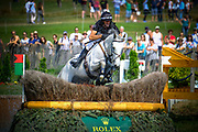 Mark TODD (NZL) riding Kiltubrid Rhapsody during the World Equestrian Festival, CHIO of Aachen 2018, on July 13th to 22th, 2018 at Aachen - Aix la Chapelle, Germany - Photo Christophe Bricot / ProSportsImages / DPPI