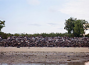 A section of Serangan after the reclamation. In 1996, the island was reclaimed and widened from 112 hectares to 365 hectares but the project would later be halted due to the monetary crisis hitting Indonesia in 1998. The reclamation caused damage to its ecosystem.According to a record, around 3,5 million tourists from around the world visited the island for vacation in 2014. Most of them preferred staying in the southern coast such as in Kuta, Nusa Dua, and Sanur. These are the tourism hubs of Bali that naturally attract investors' interest to build hotels and other leisure establishments. The island's tourism is indeed inseparable from its southern coast's history, an area blessed with breathtaking beaches. It is from here the Bali holiday business began to develop as the influx of Australian hippies and surfers to Kuta started back in the 70s. The fishermen's villages would later transform drastically because of it. Hotels, restaurants, and other facilities were growing and spreading along the coast so fast like mushrooms in a rainy season.