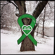 NEWTOWN, CT-10 December 2013-The green ribbon has become the symbol marking the tragedy of the Sandy Hook School shooting in Newtown. The ribbons can be seen throughout town in shop windows, on cars, and here on a tree outside a closed ice cream shop closed for the season.  (Photo by Robert Falcetti)