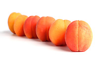 Apricots in row on white background