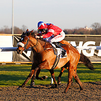 Rigolleto and George Baker winning the 3.30 race