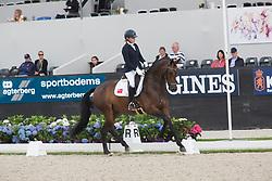 Collins Annabelle, BER, Fifth Avenue BCN<br /> World Championship Young Dressage Horses <br /> Ermelo 2016<br /> © Hippo Foto - Leanjo De Koster<br /> 29/07/16