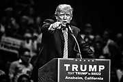 At a certain point in the rally Donald Trump would point to the media who were tightly cloistered in a pen at the back of the auditorium and have those in attendance hurl insults at them. This became a trademark at his rallies and a precursor for his attacks on the free press. Anaheim, Calif. May 26, 2016. (Photo by Gabriel Romero ©2016)