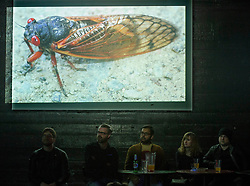 Patrons enjoy a tasty beverage while watching a presentation on insect life at the once-monthly Nerd Nite event, Monday, April 24, 2017, at Club 21 in the Uptown neighborhood of Oakland, Calif. That's a 17-year cicada pictured on the screen. (Photo by D. Ross Cameron)